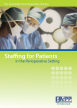 Book cover  - Staffing for Patients in the Perioperative Setting 2014 (print version)